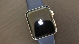 Apple Watchを使って室内運動しました