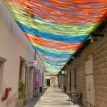 【旅シリーズ】イスラエルの一大観光都市テルアビブで芸術と猫と海を楽しむ