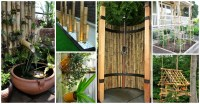 diy bamboo decor Archives