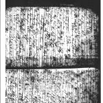 Microfilm NLI Ardfert 1818