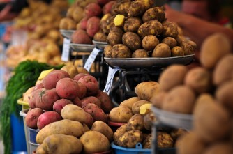 Patatas - Potatoes