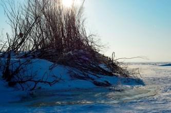 El islote apenas tiene cuatro árboles destrozados y hielo sin cubrir por la nieve - The islet barely has few trees and ice uncovered by snow