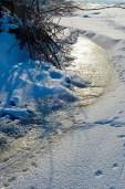 Alrededor del islote hay una sospechosa capa de hielo sin cubrir por la nieve - Around the islet there is a suspicious ice layer uncovered with snow