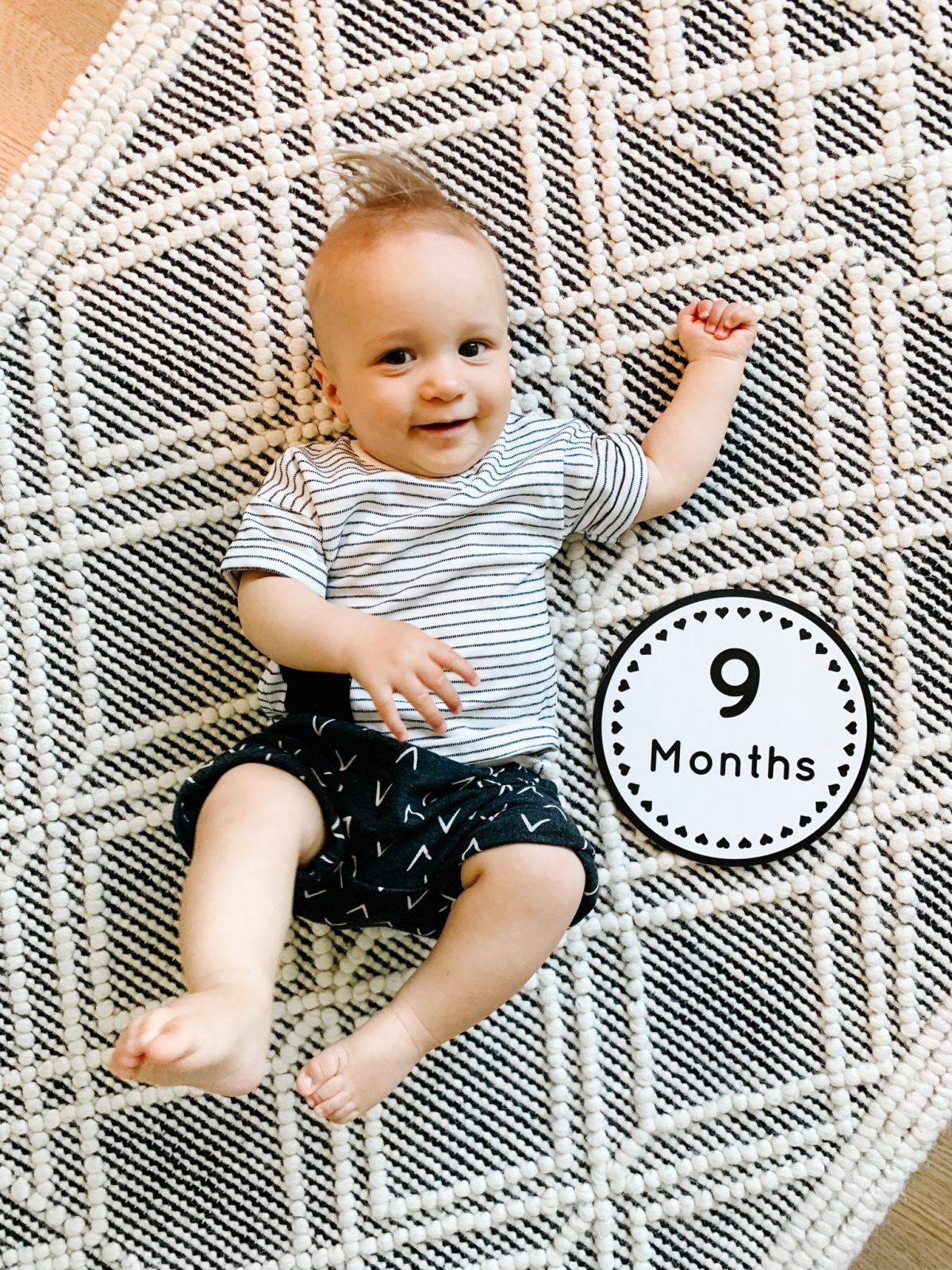 Baby Gray | 9 Month Update