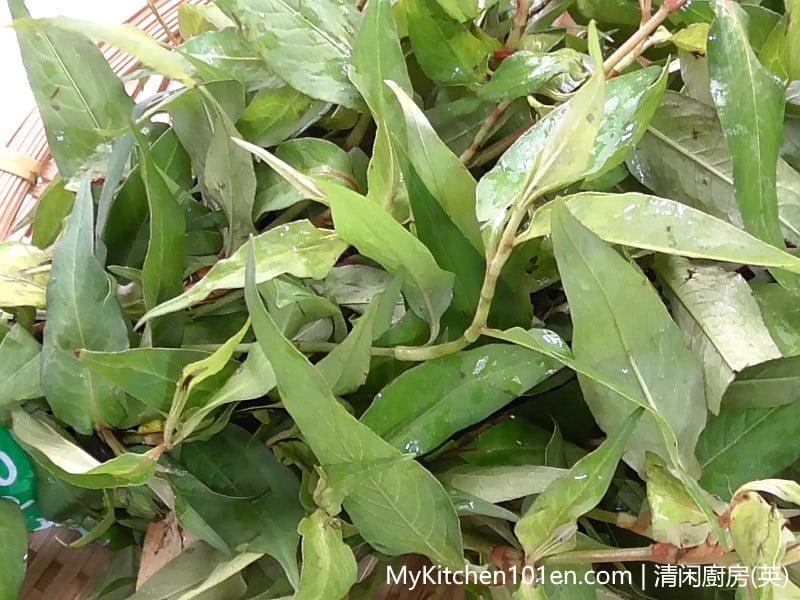 Asam Pedas (Spicy Tamarind Fish) Vietnamese cilantro (daun kesum, laksa leaf)