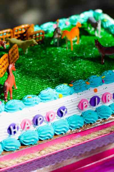 Horse Birthday CARVEL Ice Cream Cake & DIY Cake Stand