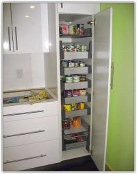 Tall white kitchen pantry cabinet | | Kitchen ideas