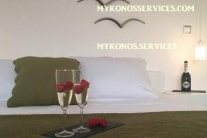 D Angelo villa sea view - rent villa mykonos services 1555