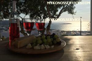 D Angelo villa sea view - rent villa mykonos services 19493939