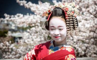 Hanami – Flower Viewing