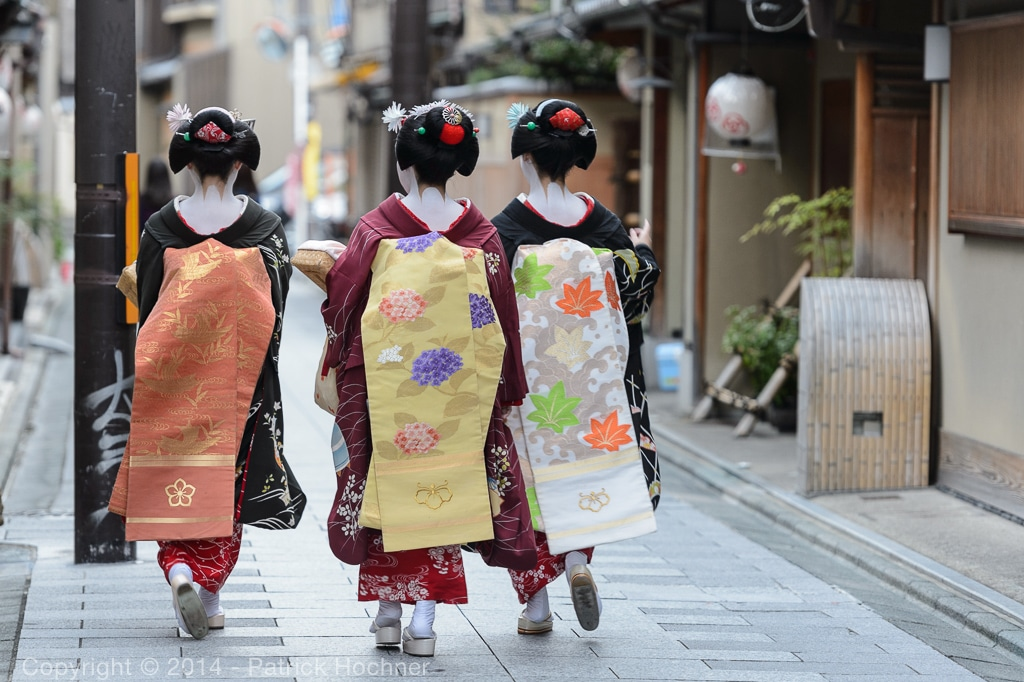 Maiko on their way to work to perform for their patrons, Miyagawa-Cho