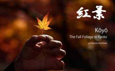 Kôyô – The Fall Foliage in Kyoto