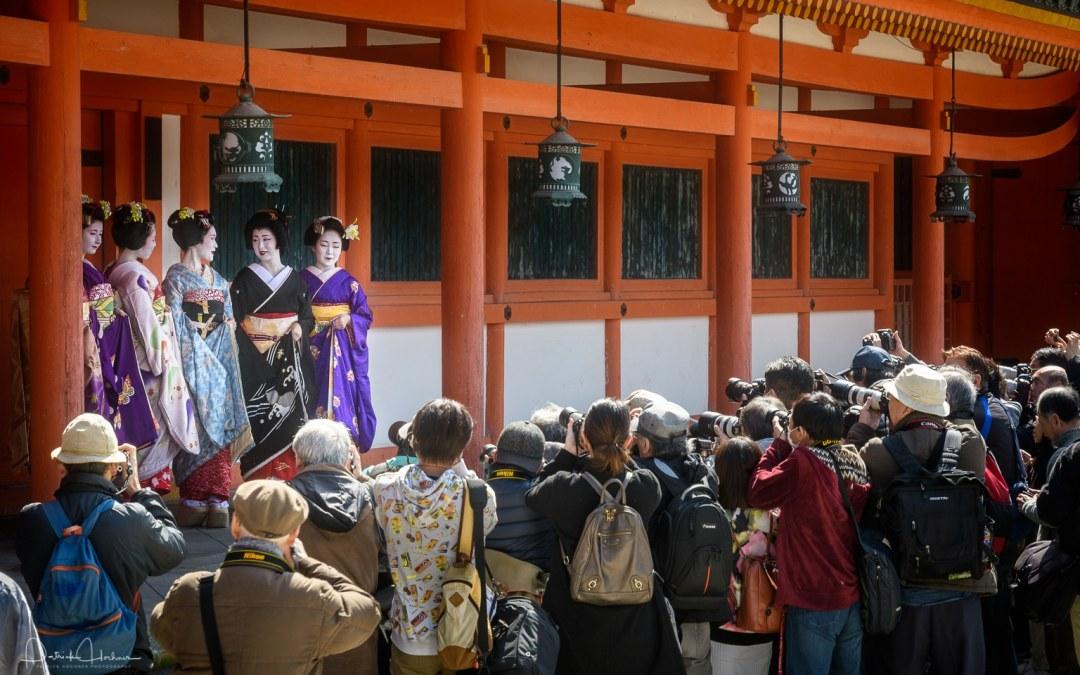 Maiko and Geiko Photo Shoot