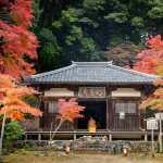 Jingo-Ji Temple in Takao