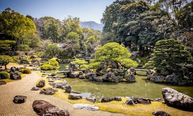 Garden, Daigo-Ji Temple
