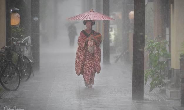 Heavy rain over the Hanamachi