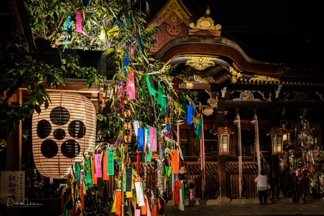 """Strips of paper """"Tanzaku"""" hung on bamboo trees placed around the shrine grounds."""