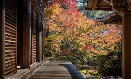 Saimiyo-Ji Temple in Takao