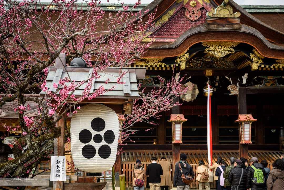 Sanctuaire Kitano Tenmangu, Kyoto