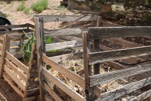And I even took pictures of this Compost system in Placitas New Mexico because I love the simplicity of it. It's my favorite 3 bin system, 1 for leaves, 1 active compost and 1 dormant compost. What I love even more is the creative use of drip irrigation to ensure the compost pile stays moist. A moist compost pile means the faster it'll decompose.