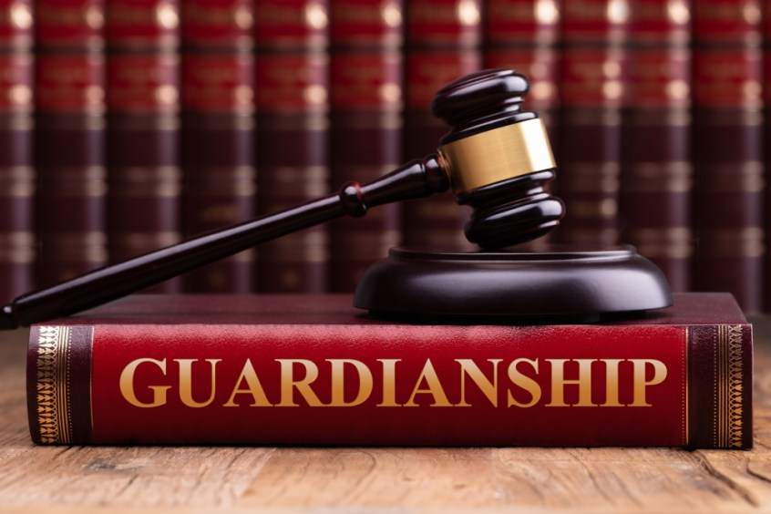 guardianship book with gavel
