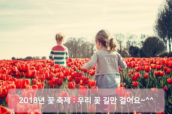 2018년 꽃 축제 ㅣ 봄철 가 볼만한 여행지 추천. 우리 꽃 길만 걸어요~