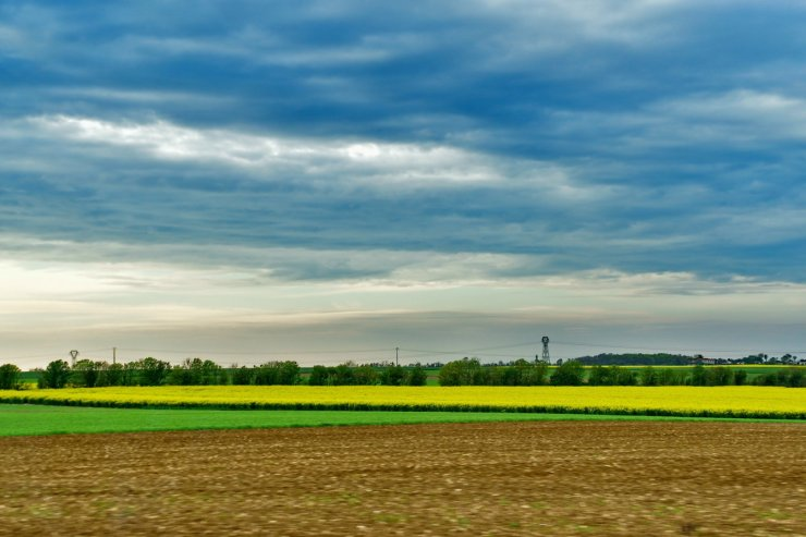 Countryside around La Rochelle, France