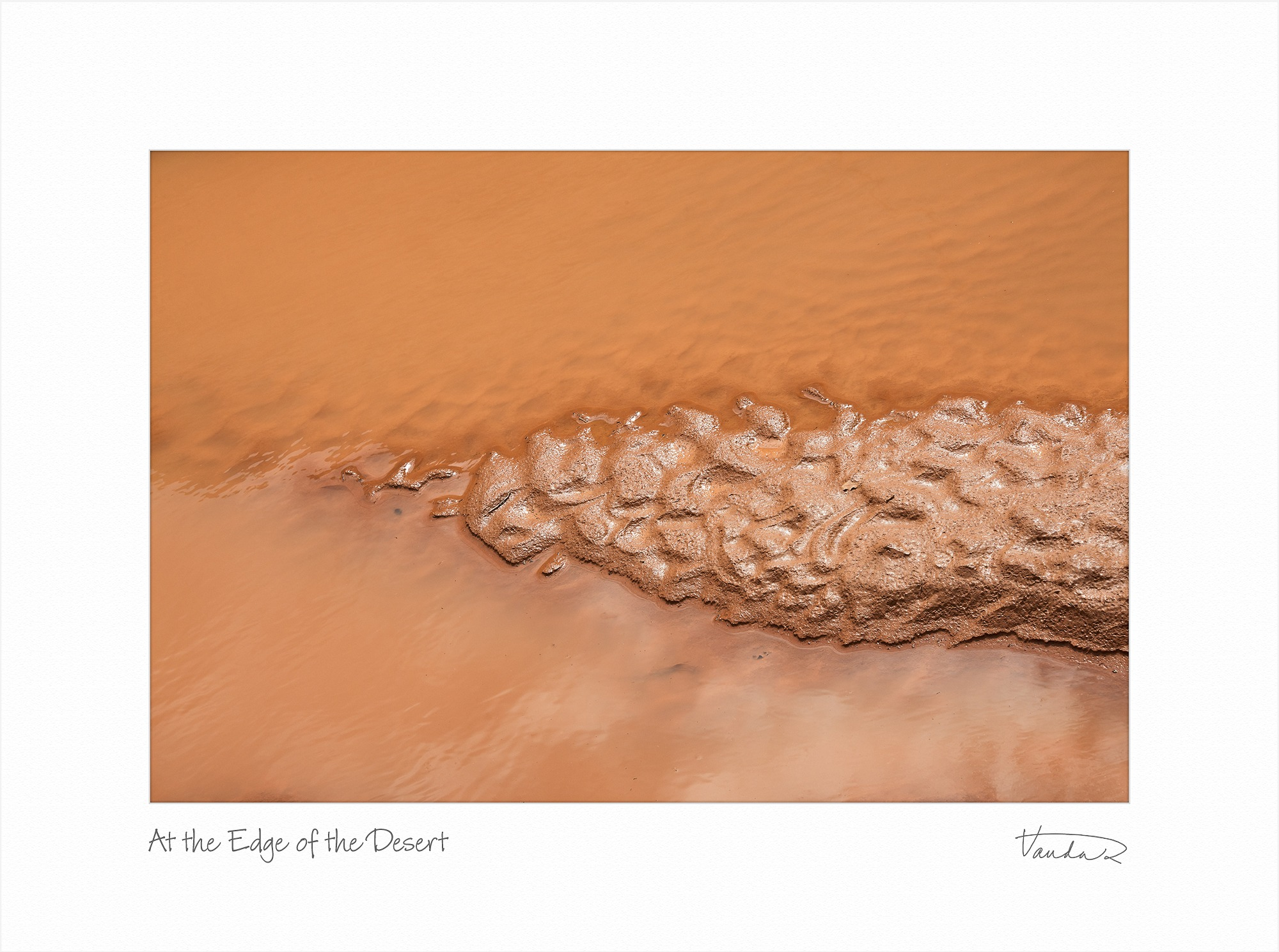 At the Edge of the Desert