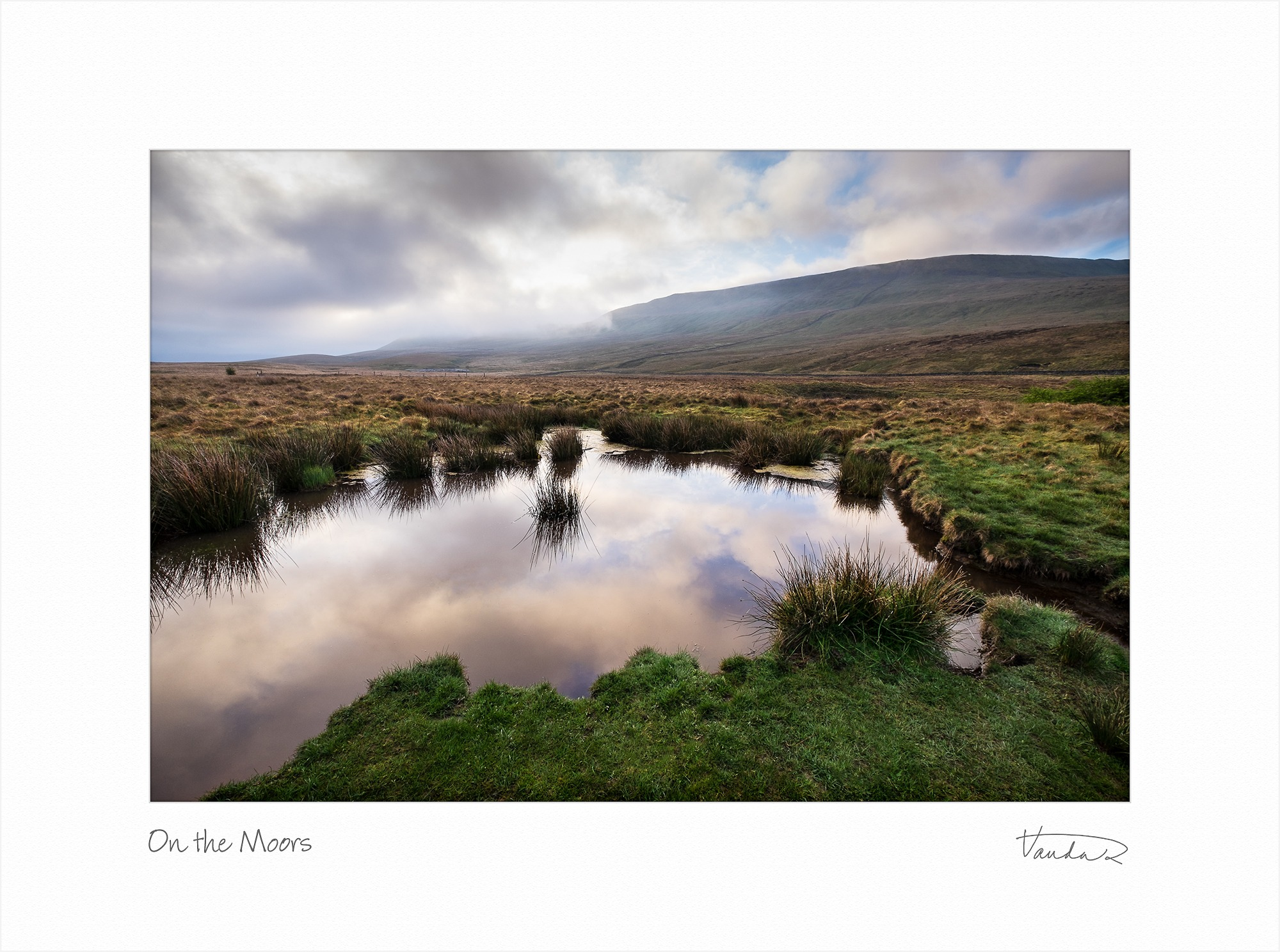Morning on the Moors
