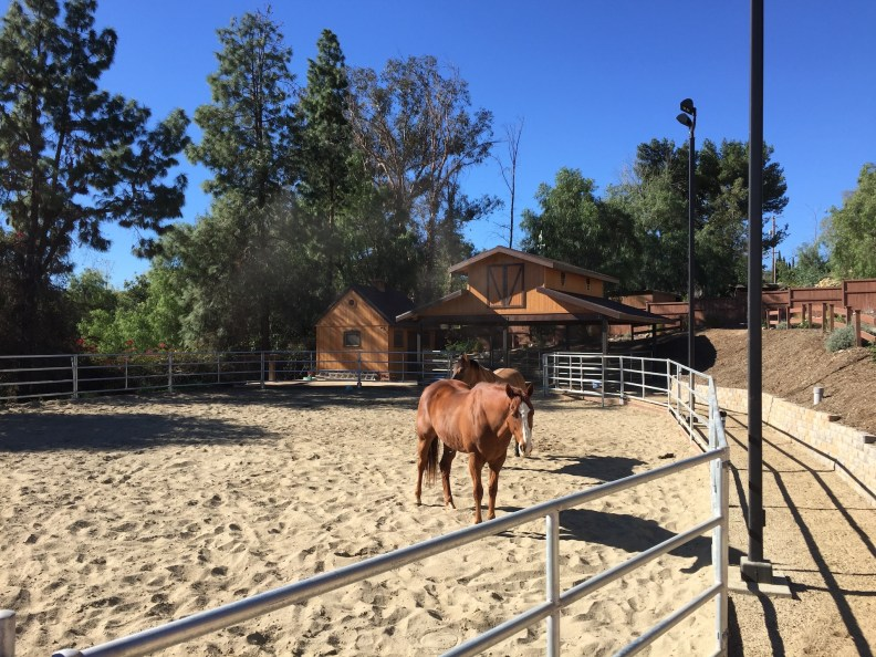 Custom Open Horse Stable, Orange Acres, California-Corral