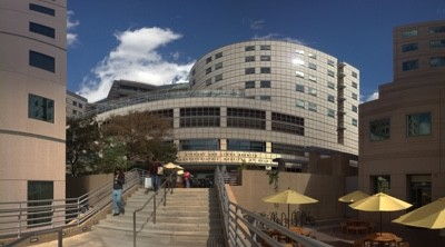 california nursing medical board attorneys lawyers