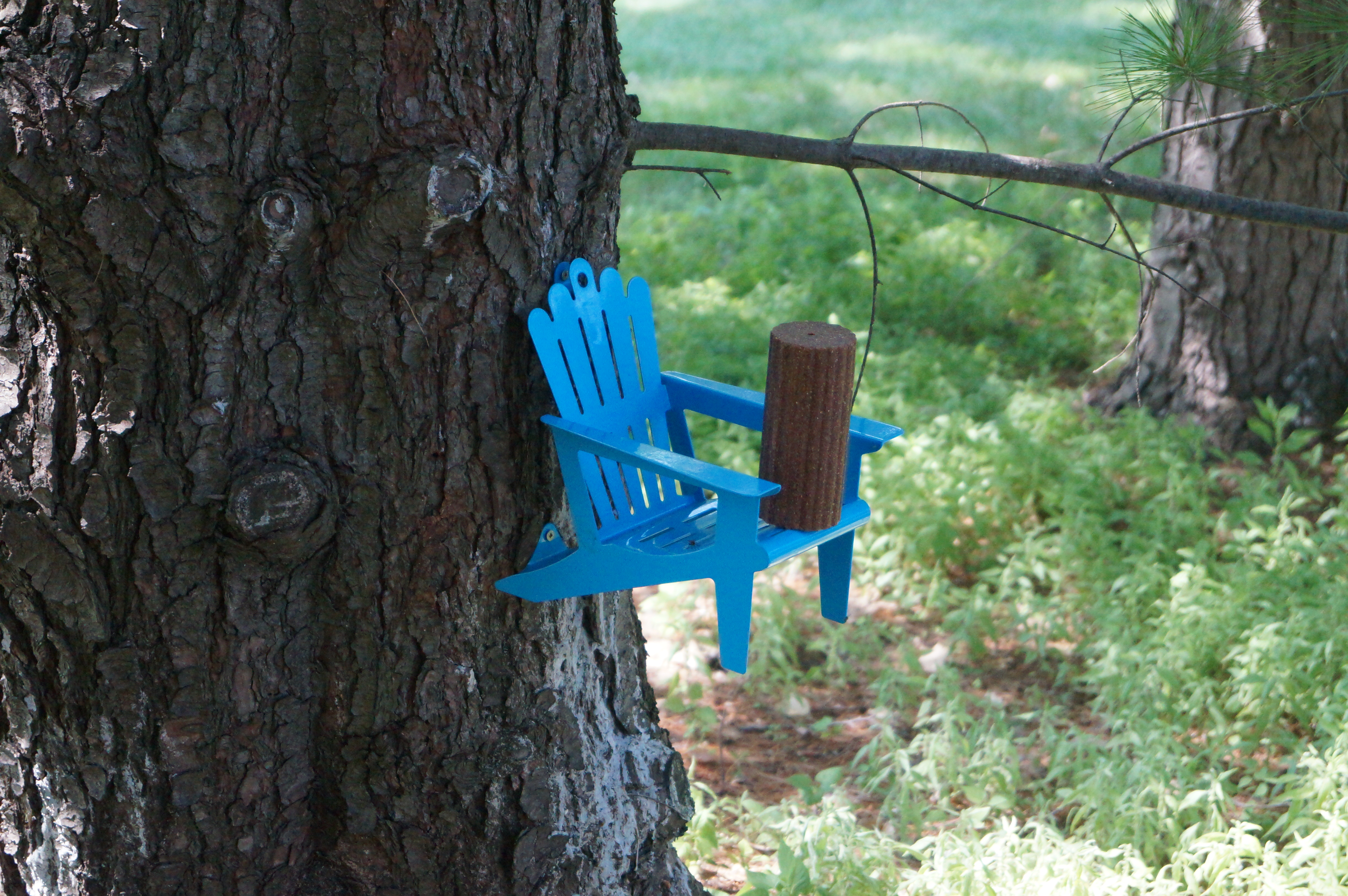squirrel feeder chair reclining lift mylifeasahouse