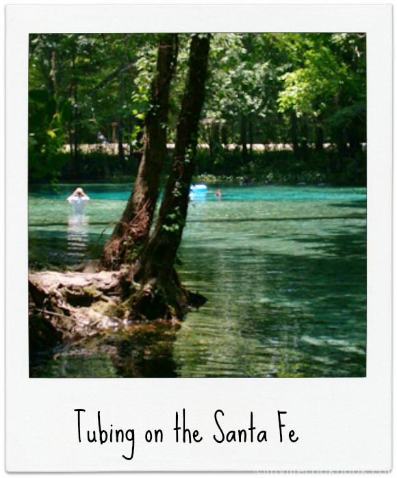 Day Trip - Gainesville, FL - A Swimming Trip to the Clearest Water on Earth