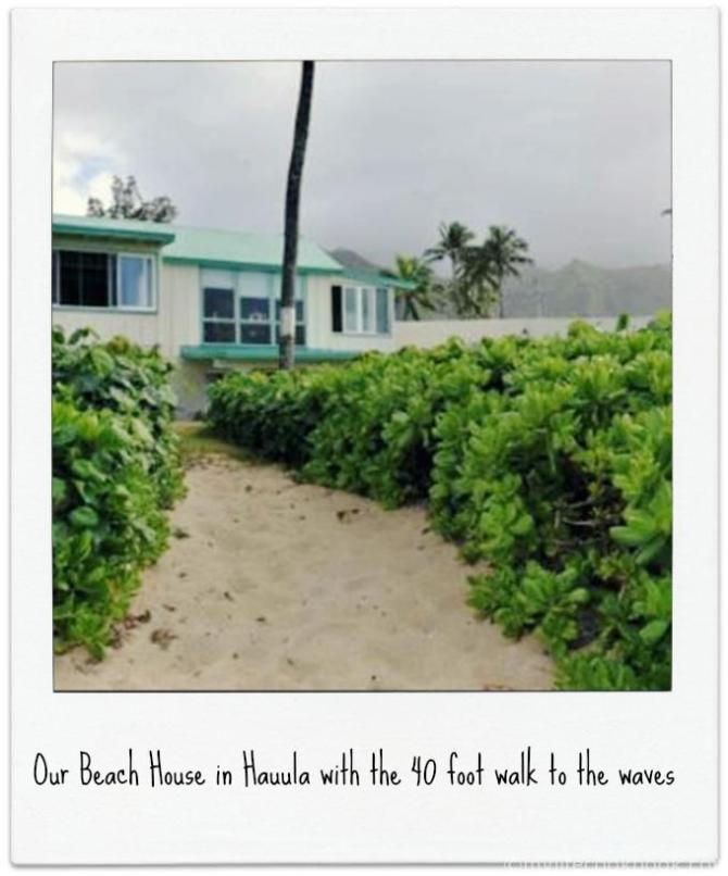The Best of Oahu in a Day - Great Beaches, Great Reefs & the Greatest Generation.