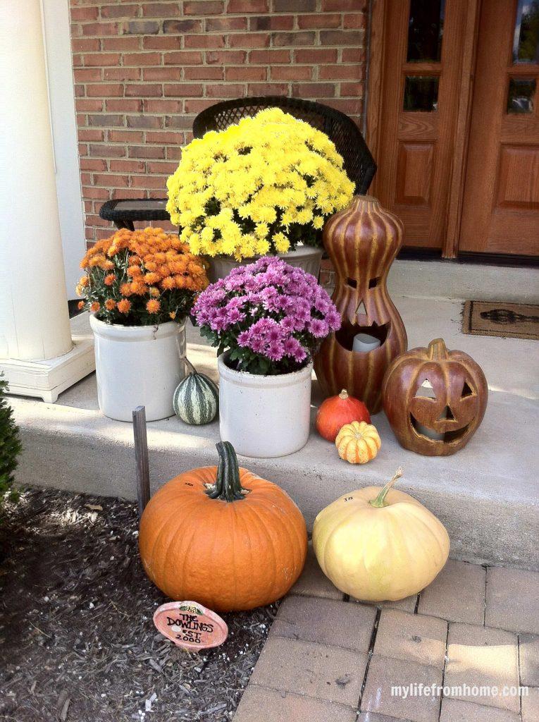 Mums, ceramic jack a lanterns & pumpkins