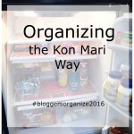 Kon Mari Organizing Project #3: Refrigerator, DIY Deodorizer and a Printable!