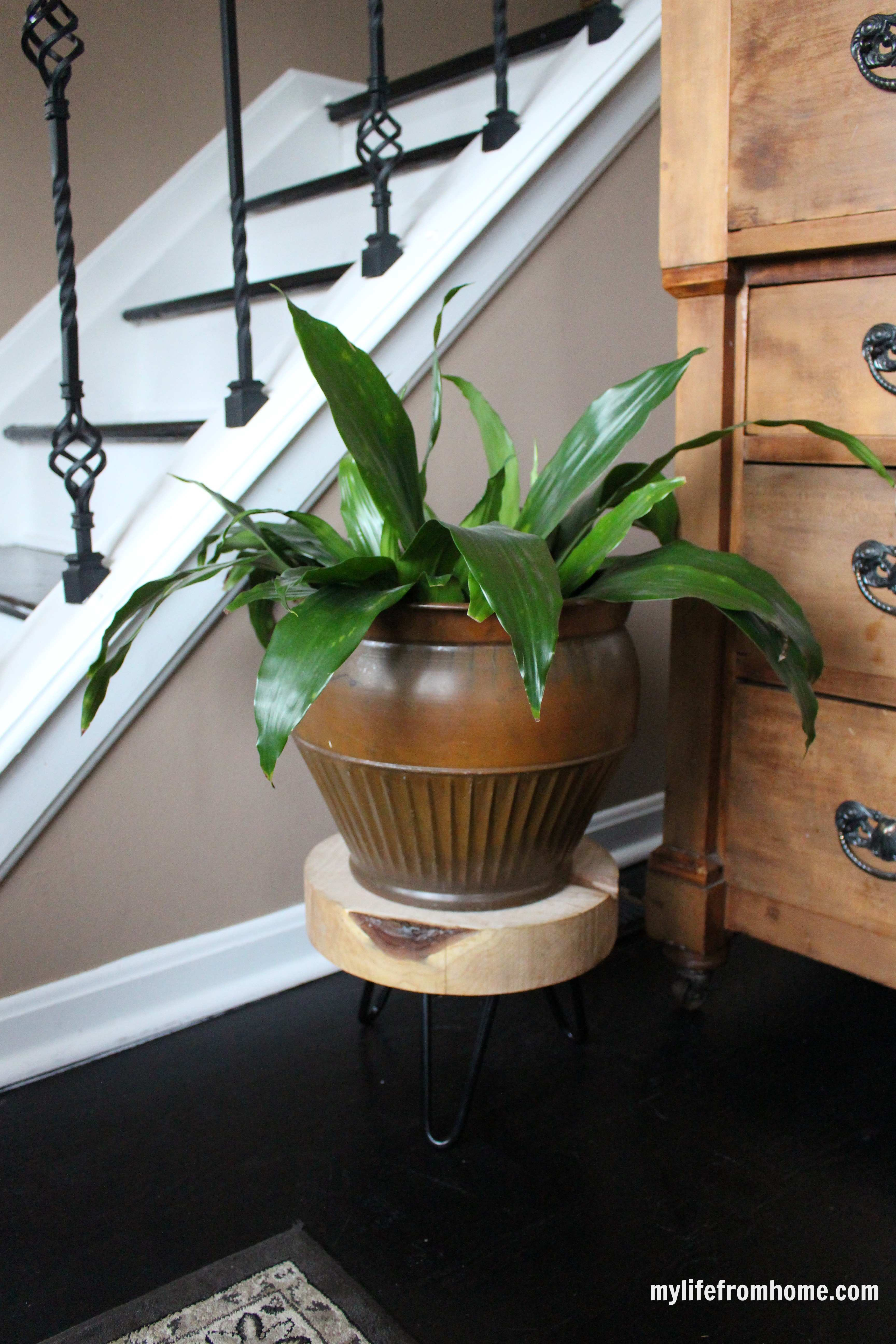 Rustic Plant Stand with Hairpin Legs by www.whitecottagehomeandliving.com