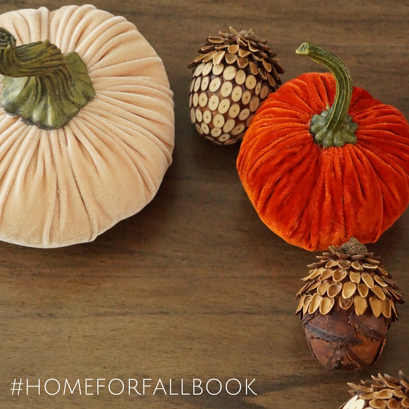 Insta Graphic #homeforfallbook