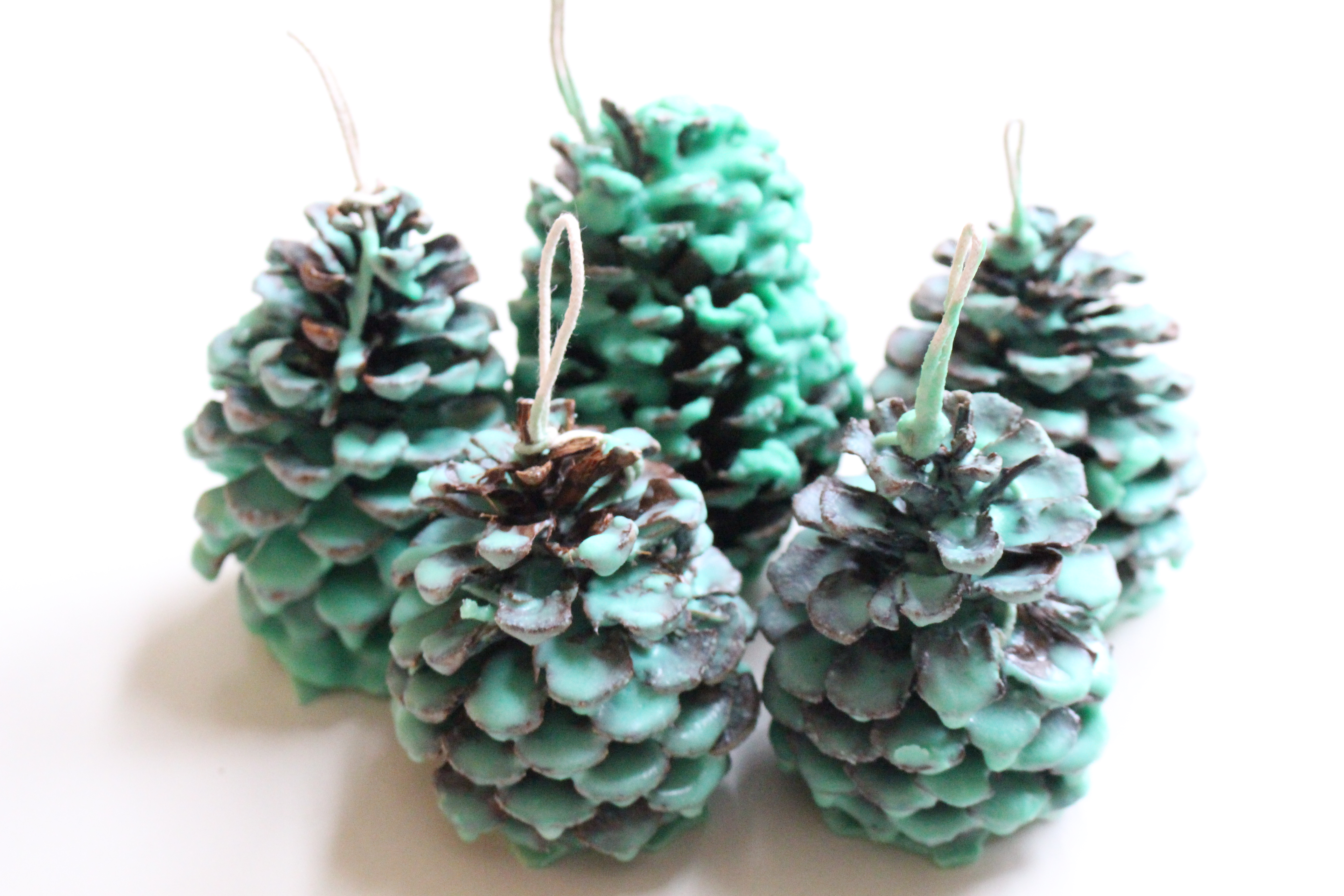 How to make Pinecone Fire Starters- crafts- wint