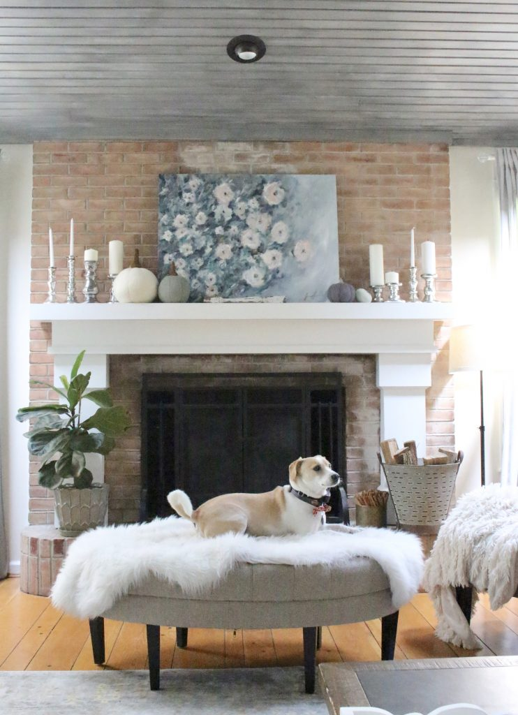 Fall pastels in our family room- pastel colors- neutrals- decorating for fall with pastel- seasonal decor- fall- autumn- living space- room design- wall decor- fall decor- pink- green- gray for autumn