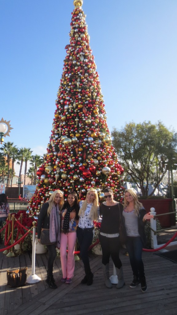 #20 Christmas at Disneyland