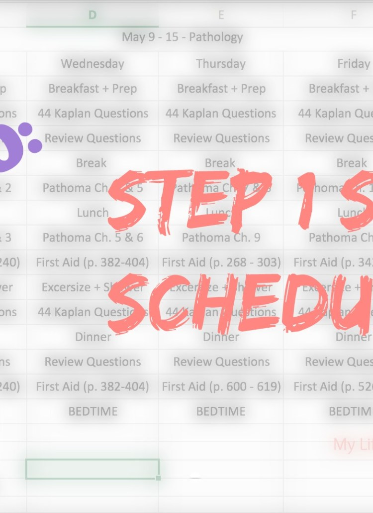 Study Schedule for Step 1, Step by Step Guide to DIY