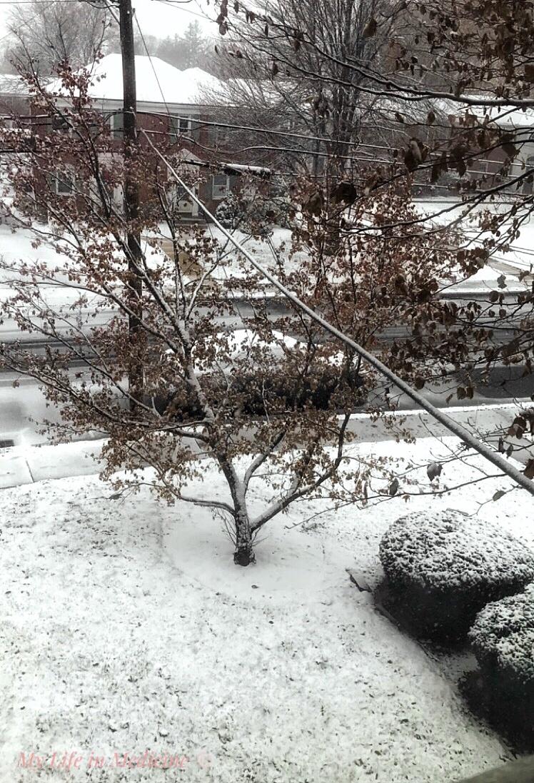 noon snow