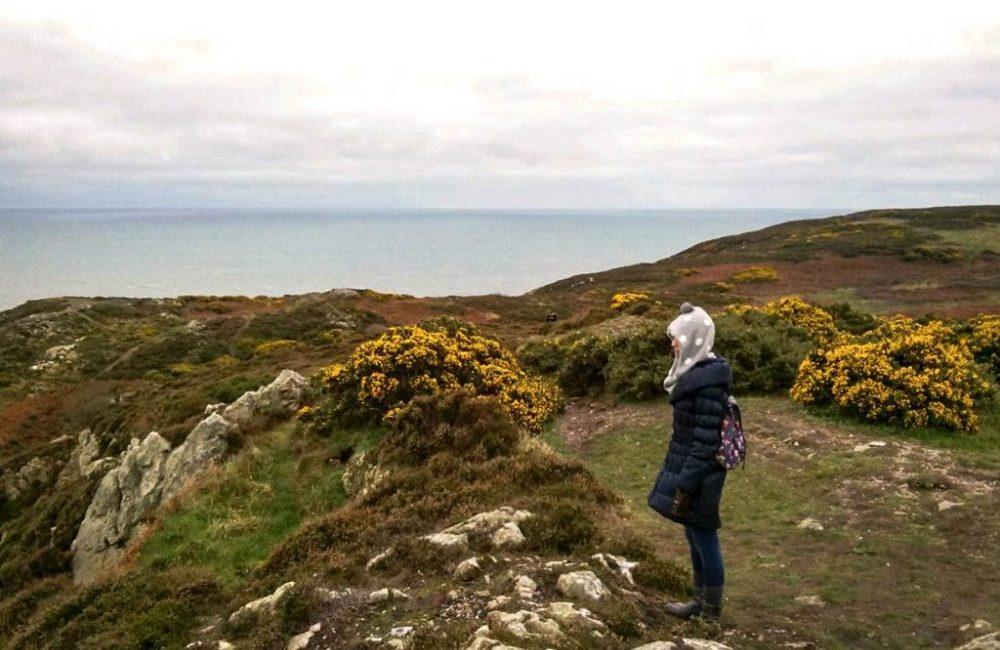 Howth: trekking tra foche e scogliere irlandesi