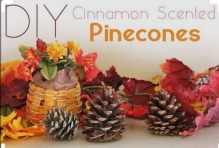 http://www.ehow.com/how_7683297_make-cinnamon-scented-pinecones.html?utm_content=inline&utm_medium=fanpage&crlt.pid=camp.ucumueqXB7m8&utm_source=pinterest