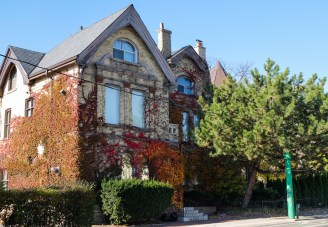Ivy covered homes with fading fall colours