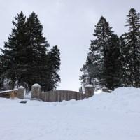 An Unusual January Roadtrip