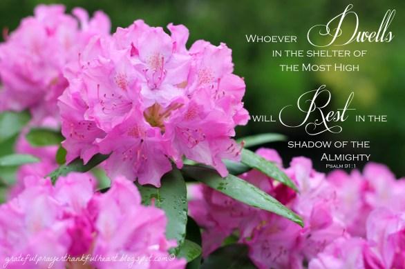 Psalm 91 | Grateful Prayer | Thankful Heart