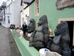 Gorillas in Portpatrick