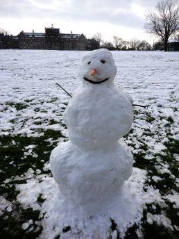 snow137